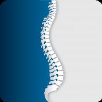 Basham Chiropractic